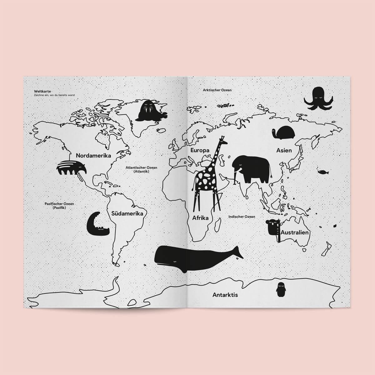 notebook_baer-1